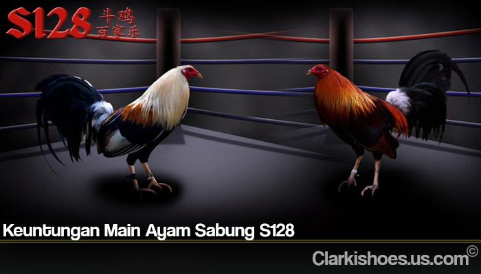 Keuntungan Main Ayam Sabung S128